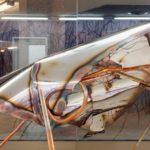Weltenfremdes Sexobjekt Steffen Jopp Detailansicht Mouches Volantes Foto Dirk Rose 150x150 - Kunst in 300 Worten: Das Unbegreifliche – James Lee Byars